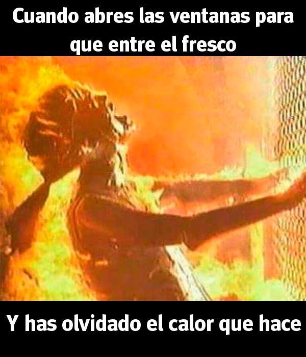 Imágenes graciosas acerca del calor