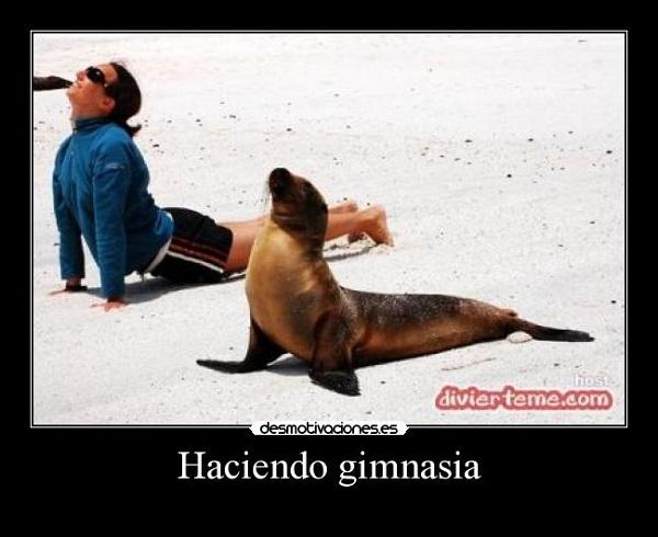 Imágenes graciosas haciendo gimnasia
